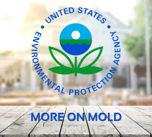 More On Mold - EPA